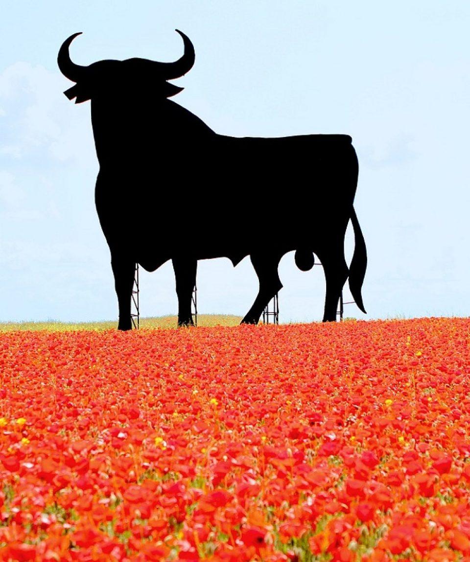 Spagna bella2