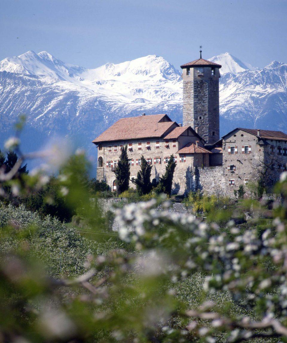 Italia castel valer con fioritura meli